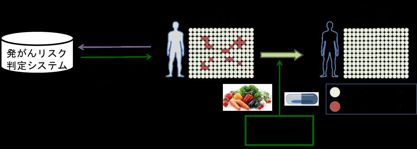 ■AIを活用した食生活改善はガンのリスク低減にもつながる|人工知能を搭載した製品・サービスの比較一覧・導入活用事例・資料請求が無料でできるAIポータルメディア