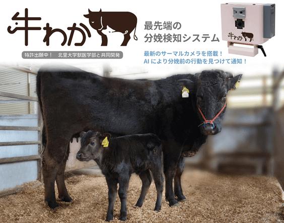 牛わか カタログ