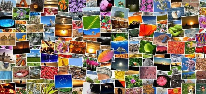 ■Watson visual recognitionの機能と特徴|人工知能を搭載した製品・サービスの比較一覧・導入活用事例・資料請求が無料でできるAIポータルメディア